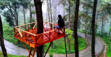 Hutan Pinus Si Kembang Park Batang Cocok untuk Bersantai